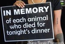 PETA / PETA, Animal cruelty, vegetarianism, vegan