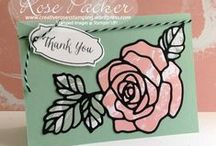 Rose Garden / Rose Wonder