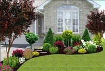 Garden/Curb appeal / by Suzanne Timon