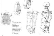 anatomy/pose ref