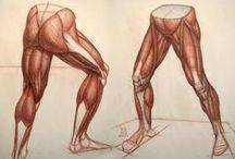 legs+feet ref