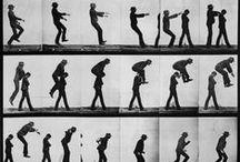 human+animal locomotion