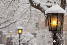* fall-winter wonder *