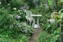 * dreaming a garden *