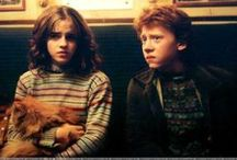 Ron & Hermione♥