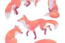Fox-Box / And their Hairy-Tales