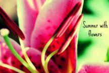 Summer with flowers  / I fiori mettono sempre allegria, in tutte le stagioni...   Ecco un outfit per essere alla moda con un pizzico di felicità!