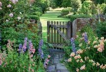Garden&flowers / garden, flowers, shabby chic