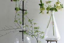 Thema - Natuur in huis / Leuke tips en trucs om zelf of met behulp van onze vakmannen de natuur in huis te halen.