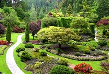 Gardens / Outdoors