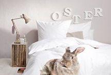 Ostern / Easter / Ostertorten, Osternester, österliche Deko-Ideen und die schönsten DIYs zu Ostern: So läuft der Hase.