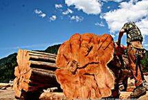 Western Red Cedar Handcrafted Log Homes