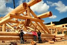 Handcrafted Custom Log Roof Systems