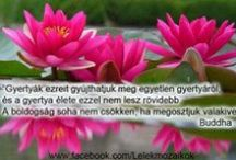 Idézetek - Buddha / Lélekmozaikok: http://lelekmozaikok.cafeblog.hu Történetek...Érzések...Gondolatok... Lelked építőkövei a megismerés útján...