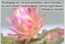 Idézetek / Lélekmozaikok: http://lelekmozaikok.cafeblog.hu Történetek...Érzések...Gondolatok... Lelked építőkövei a megismerés útján...