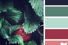 Paint Colors / by Bonnie Lane