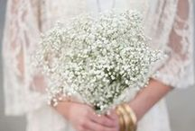 Wedding inspirations 2 - Gypsophila paniculata