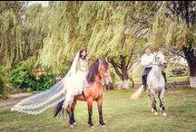 Photo shooting la conac / Ziua nunti este importanta dar si ce se intampla dupa este minunat! 100 de poze diferite am vazut facute ba pe caluti, ba in livada, ba in camere! Voi unde ati face pozele?