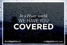 In a Hyatt World