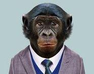 Yago Partal Collagen, Zoo Portraits