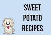 Sweet Potato Recipes