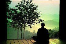 Zen / Zen....nothing comes after