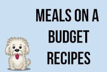 Meals on a Budget Recipes