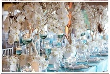 Table Setting / by Lifetime Brands