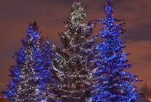 Christmas-Noel / Christmas decor and holiday