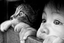 |animal and people|photography