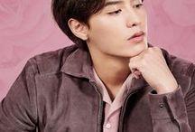 Korean Actors Pastel Edit