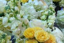 Flowers We Love / Assortment of Anthony Brownie floral arrangements