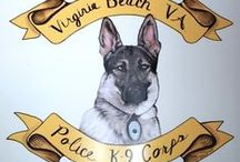VBPD Canine (K9) Unit  / The canine unit performs its duties with twenty-four hour coverage. Each canine team is certified in patrol work and several are cross-trained in explosive detection. The patrol canines are all males and are European imported shepherds and malinois.  All Virginia Beach Police canines are certified by and meet the standards of the Virginia Police Work Dog Association and the North American Police Work Dog Association.  / by Virginia Beach Police Department