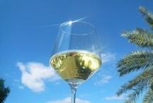 Fikardos Winery 2012 Harvest