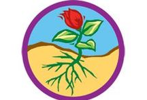 Flowers Badge -- Junior Girl Scout Badge Ideas / Requirements for Junior Badge Flowers 1. Uncover the science of one flower 2. Look under the petals 3. Find out how flowers help people 4. Have fun with flowers 5. Send a message in flower code / by Junior Girl Scout Badges