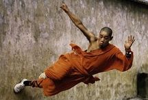 Asian Martial Arts / The more martial art wire-fu beat downs, the better