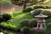 Japon, pour rêver