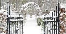 * Hiver / winter