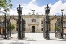 Sevilla, la ciudad de mi corazón