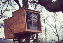 Treehut