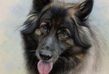 Cats and Dogs - Art and Animals - Dieren en kunst / Dieren en kunst - Art and Animals - Cats & Dogs