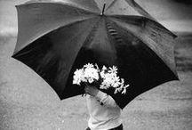 Vivere non é aspettare che la tempesta passi, vivere é imparare a danzare sotto la pioggia