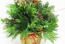 Christmas is in the Air  / Here are some of our NEW Items that we are offering this Christmas Season. Greenery Arrangements, Hanging Wall Baskets, Swags, & Christmas Balls