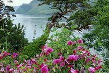 Naturaleza (I) / ¡¡Me encantan las buenas fotografías sobre la Naturaleza¡¡ / by Pura Musso del Moral
