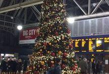 Christmas / Christmas Displays by GP Plantscape