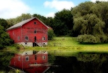 Barn Style / by Renee Lawrence