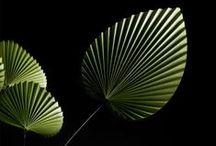 Paper Leaf Modular Origami / Paper Origami M&O Miami
