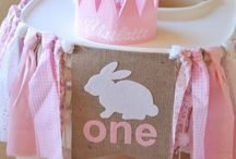 Bunny Party Ideas / Ideas for a bunny theme birthday party, baby shower, or any bunny party! Personalized bunny invitations, decor, favors, food and more bunny party ideas!