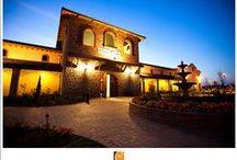 Weddings at Casa Real & Ruby Hill Winery / Casa Real at Ruby Hill Winery weddings