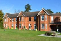 Eltisley Manor / A registered psychiatric nursing care home located near to St Neot's, Cambridgeshire.